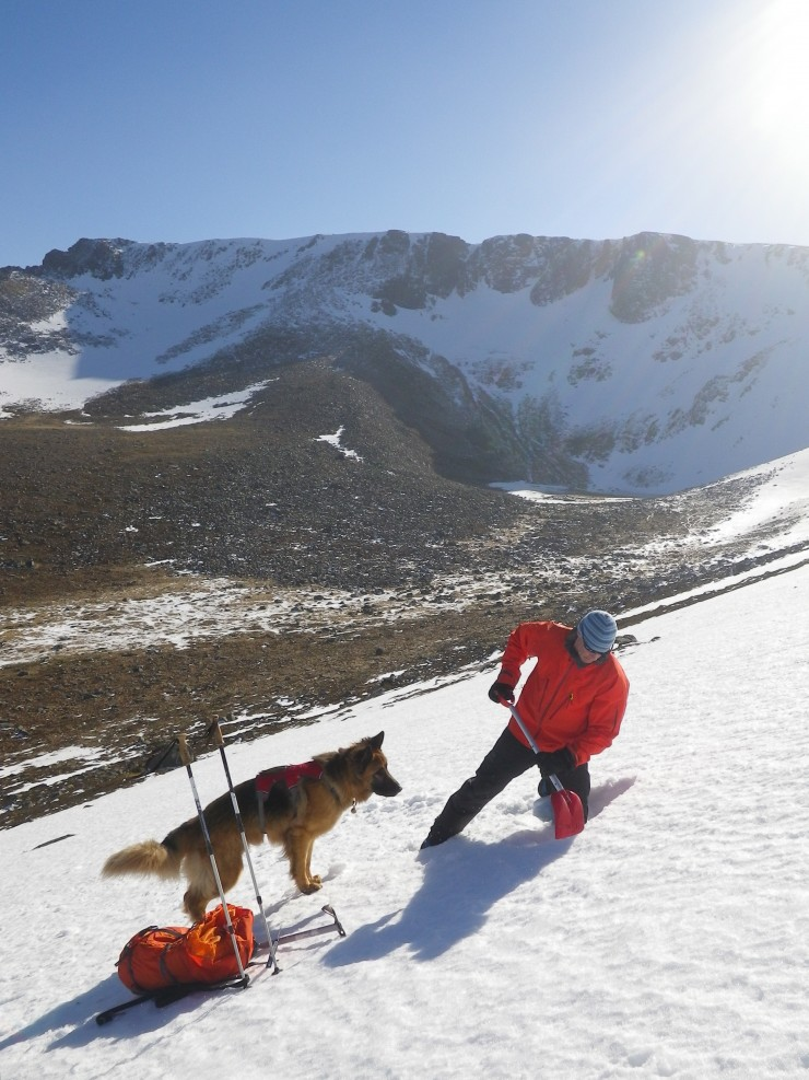 The snowpack surface is softening on sunny slopes, but still very firm beneath