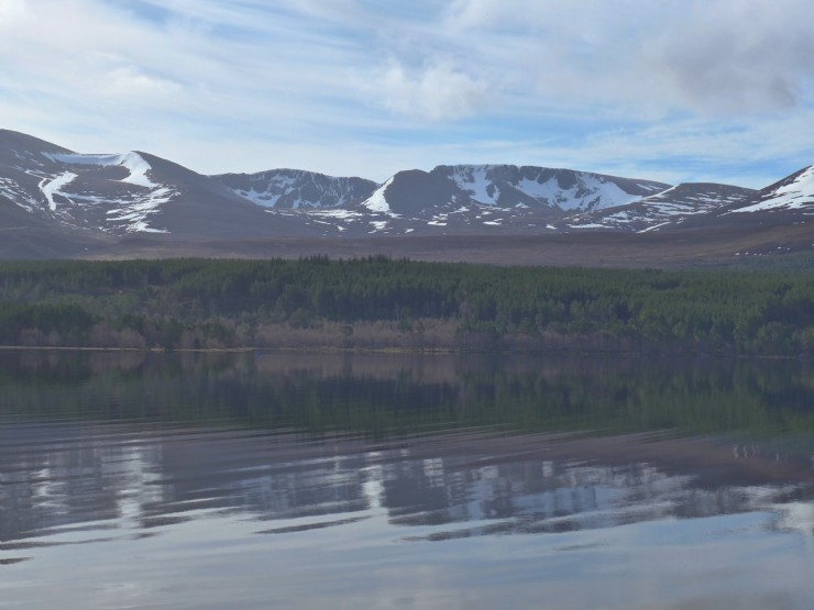 Northern Corries in the morning from Loch Morlich