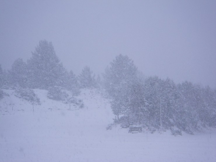 Heavy snow showers at Glenmore