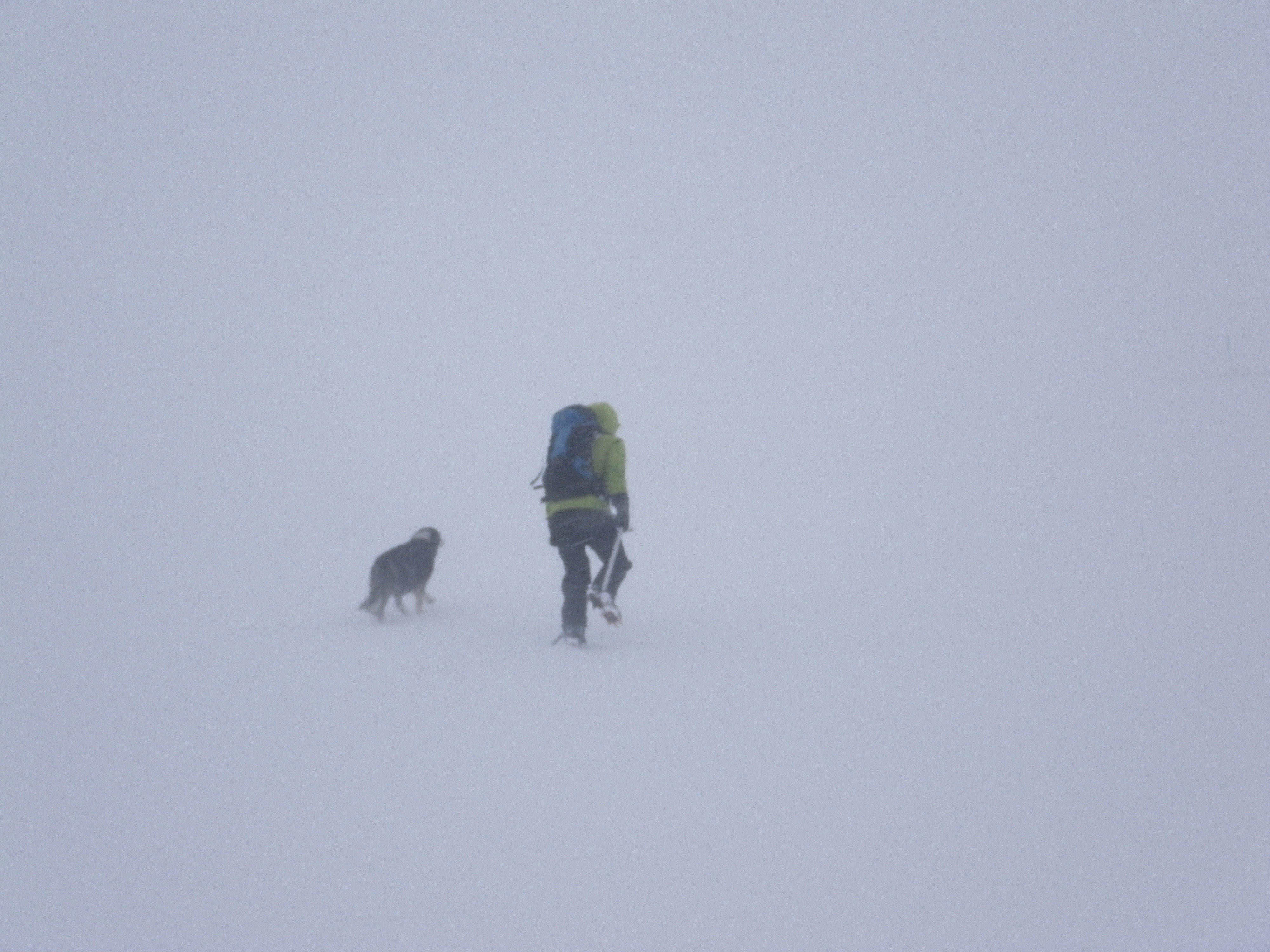 Blizzard conditions at 1000m