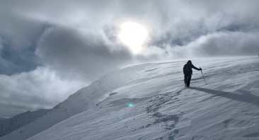 Reset to Wind Again with Avalanche Activity