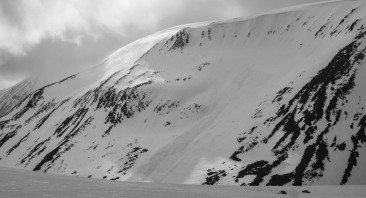 Avalanche Observations