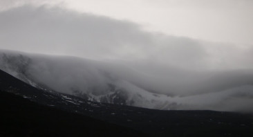 Misty,wet and mild in the Cairngorms